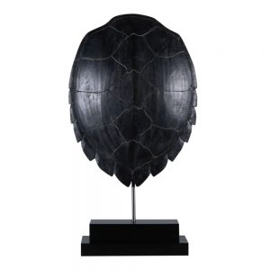 Turtle shell on Stand Black